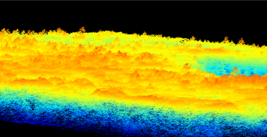 Figure 5: G-LiHT LiDAR Point Cloud over the Harvard Forest MegaPlot